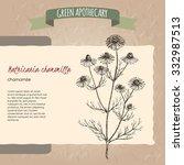 matricaria chamomilla aka... | Shutterstock .eps vector #332987513
