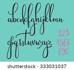 handwritten pointed pen ink... | Shutterstock .eps vector #333031037