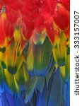 Bird  Feathers  Scarlet Macaw...