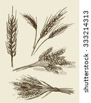 vector hand drawn wheat ears... | Shutterstock .eps vector #333214313