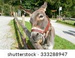 Ballenberg  Switzerland   23...