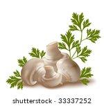 vector. ripe mushroom... | Shutterstock .eps vector #33337252