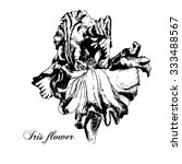 iris flower. black and white... | Shutterstock .eps vector #333488567