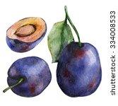 watercolor plums | Shutterstock . vector #334008533