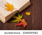 Opened Book And Autumn Leaves...