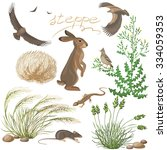 Flora And Fauna Of The Steppe...