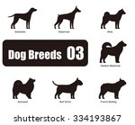 Dog Breeds  Standing On The...