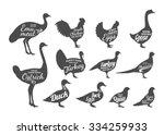 set of butchery labels... | Shutterstock .eps vector #334259933
