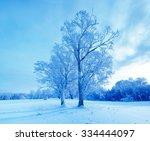 Winter Landscape. Cold Winter...