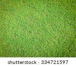 closeup green grass filed yard... | Shutterstock . vector #334721597