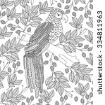 hand drawn bird coloring page | Shutterstock .eps vector #334811963