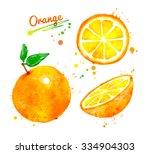 hand drawn watercolor half ... | Shutterstock . vector #334904303