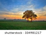 autumn landscape. trees on the... | Shutterstock . vector #334981217