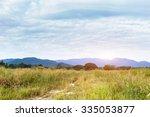 summer meadow on bright sunny...   Shutterstock . vector #335053877