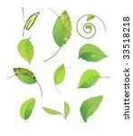 leaves  set of elements | Shutterstock .eps vector #33518218
