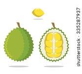 durian anatomy | Shutterstock .eps vector #335287937