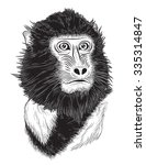 vector portrait of monkey on... | Shutterstock .eps vector #335314847