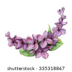 watercolor lilac flowerd... | Shutterstock . vector #335318867