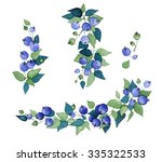 composition with blueberries... | Shutterstock . vector #335322533