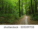 trees in a green forest  | Shutterstock . vector #335359733