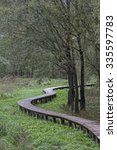 Small photo of Dry ground can be reached by means of wooden walkways through the idyllic biotope at Lake Terlago
