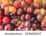 red grapes on white background   Shutterstock . vector #335605637