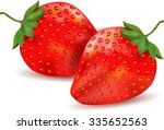 beautiful red strawberry vector ...