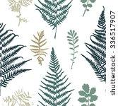 illustration of fern seamless... | Shutterstock . vector #336517907