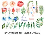 Colorful floral collection with roses,flowers,leaves,protea,blue berries,spruce branch,eryngium.Colorful floral collection with 31 watercolor elements.Set of floral elements for your own compositions