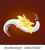 milk splash with vanilla flower ... | Shutterstock .eps vector #336674633