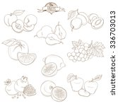 vector illustration set of... | Shutterstock .eps vector #336703013
