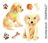Labrador Retriever Puppy Set....