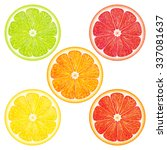 collection citrus  grapefruit ... | Shutterstock .eps vector #337081637