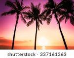 tropical sunset | Shutterstock . vector #337161263