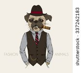 pug gangster with cigar  furry... | Shutterstock .eps vector #337262183
