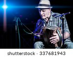 Small photo of Accordion player popular during a concert of folk music