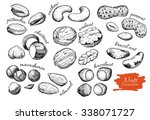 Vector Hand Drawn Nuts Set....