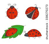 Set Of Hand Drawn Ladybugs....