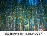 abstract natural background... | Shutterstock . vector #338340287