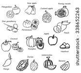 fruit sketch in black doodle... | Shutterstock .eps vector #338652263