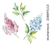 branch of lilac.watercolor | Shutterstock . vector #338895113