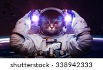 Beautiful Cat In Outer Space....