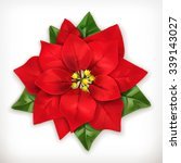 Poinsettia  Christmas Star...