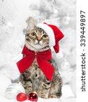 christmas cat at red santa's... | Shutterstock . vector #339449897