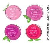 fresh juice    health food... | Shutterstock .eps vector #339487253