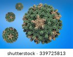 hepatitis b virus. structure of ...