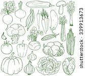 set of fresh healthy hand... | Shutterstock .eps vector #339913673