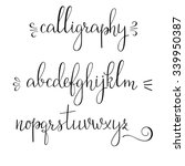 handwritten pointed pen ink... | Shutterstock .eps vector #339950387