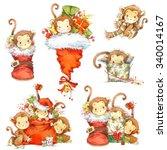 Monkey Year Set. Funny Cartoon...