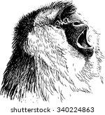 roaring monkey | Shutterstock .eps vector #340224863